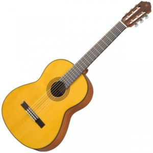 Прокат классической гитары в Москве